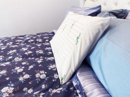 天然乳膠枕-低枕 (兩顆以上請選擇宅配)