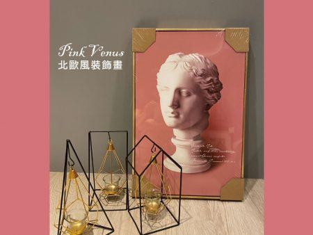 北歐風裝飾畫 /  Pink Venus維納斯 居家美學 設計感小物